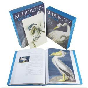 fa840-audubon27saviarybook