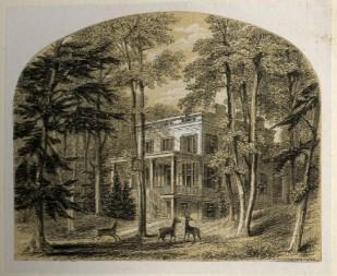 Minnie's Land 1849